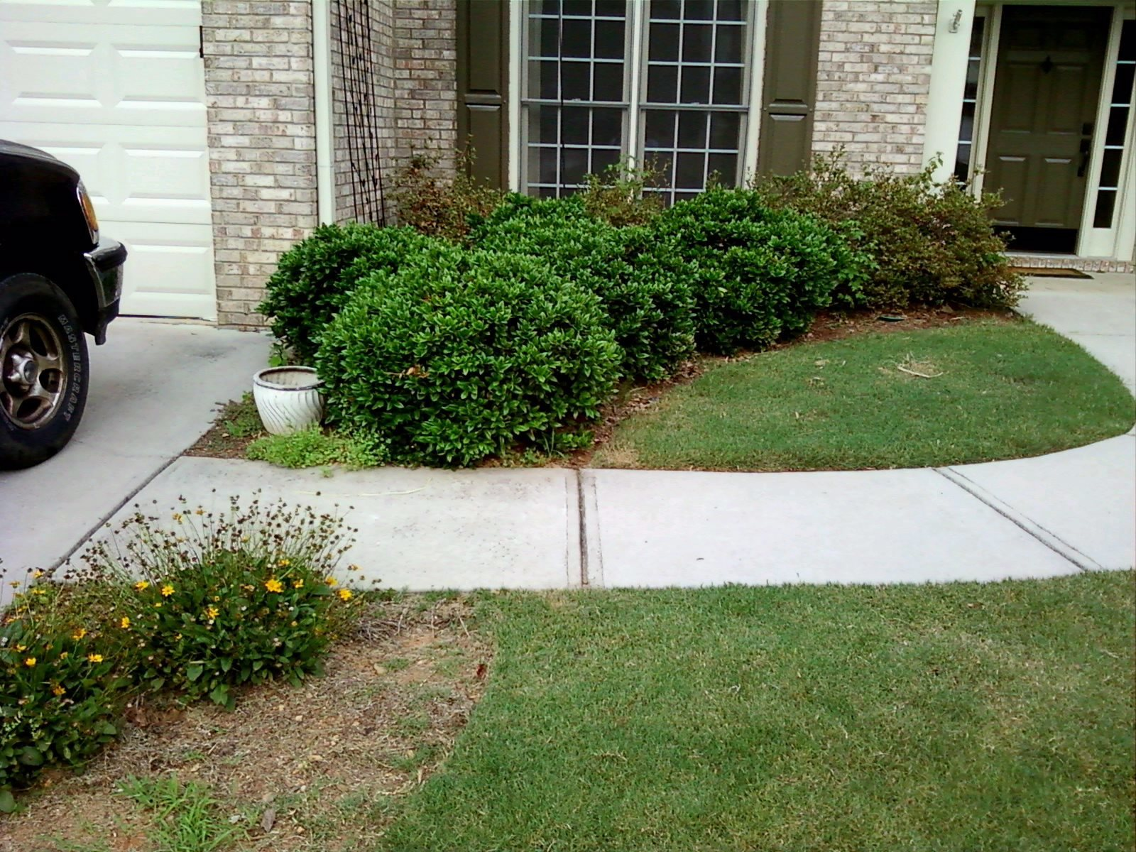 Landscaping Photos And Landscaping Photo Gallery For